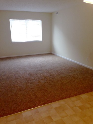 Rent Apartment Conway 29526